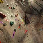 VWR-gym-leadarea2